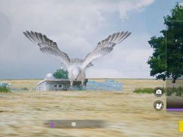 fungsi burung di PUBG mobile