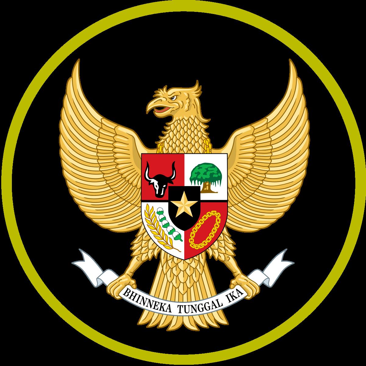 logo timnas Indonesia kit DLS